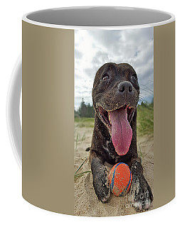 Coffee Mug featuring the photograph Beach Dog - More Play? By Kaye Menner by Kaye Menner