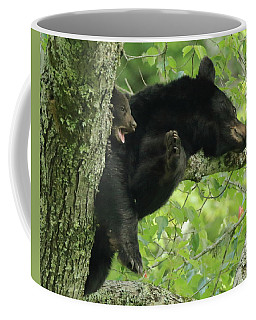 Bear And Cub In Tree Coffee Mug