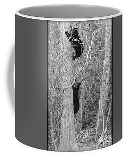 Bear Cubs Coffee Mug