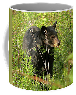 Bear In The Grass Coffee Mug