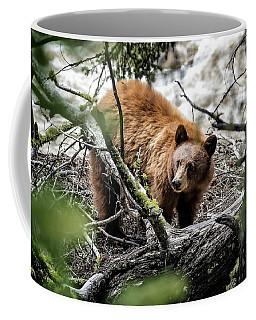 Bear In Trees Coffee Mug