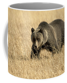 Bear On The Prowl Coffee Mug