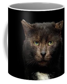 Coffee Mug featuring the photograph Bear by Sergey Taran