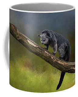 Bearcat Coffee Mug