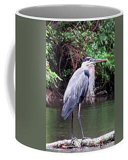 Bearded Blue Heron Coffee Mug