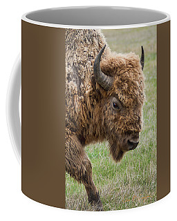The Beast Coffee Mug