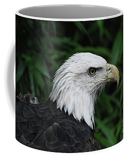 Beautiful American Bald Eagle Coffee Mug by DejaVu Designs