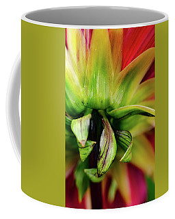Beautiful Backside Coffee Mug