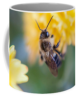 Beautiful Bee Coffee Mug