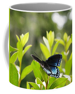 Beautiful Butterfly Morning Coffee Mug