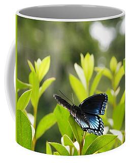 Beautiful Butterfly Morning Coffee Mug