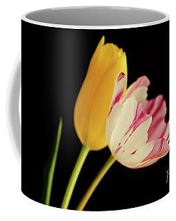 Beautiful Combination Coffee Mug