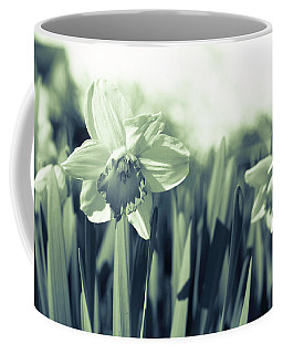 Beautiful Daffodil Coffee Mug