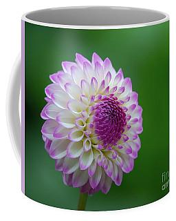 Beautiful Dahlia 1 Coffee Mug