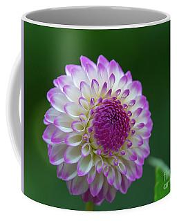 Beautiful Dahlia 2 Coffee Mug
