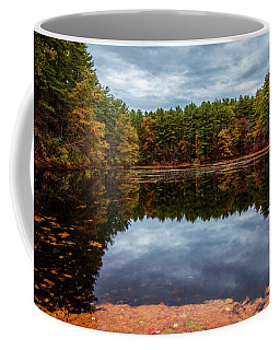 Coffee Mug featuring the photograph Beautiful Day Last Fall by Lilia D