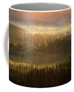 Beautiful Foggy Forest During Autumn Sunrise, Saxon Switzerland, Germany Coffee Mug