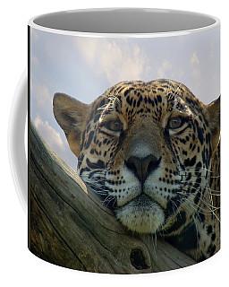 Beautiful Jaguar Coffee Mug