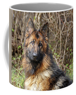 Coffee Mug featuring the photograph Beautiful Jessy by Sandy Keeton