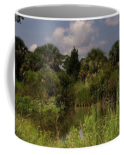 Beautiful Landscape Of Trees Coffee Mug