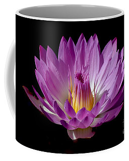 Beautiful Pink Pearl Lily Coffee Mug