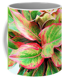 Coffee Mug featuring the photograph Beautiful Red Aglaonema by Ray Shrewsberry