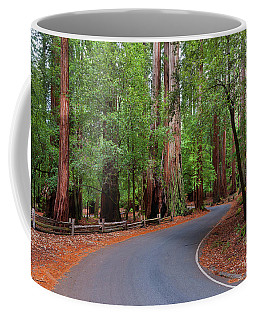 Beautiful Redwood Grove Coffee Mug