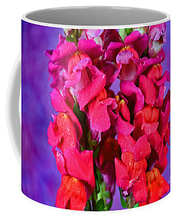 Beautiful Snapdragon Flowers Coffee Mug by Ray Shrewsberry
