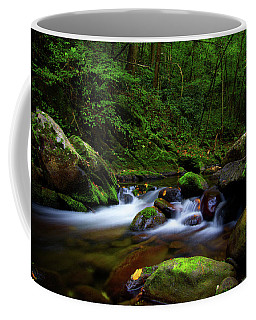 Beautiful Stream In Tremont Smoky Mountains Tennessee Coffee Mug