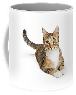Beautiful Tabby Cat Looking At Camera Coffee Mug