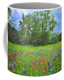 Beautiful Texas Spring Coffee Mug