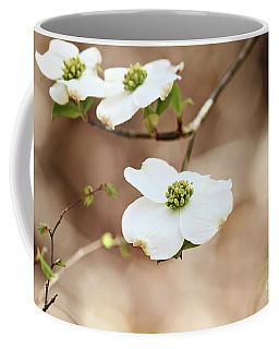 Beautiful White Flowering Dogwood Blossoms Coffee Mug