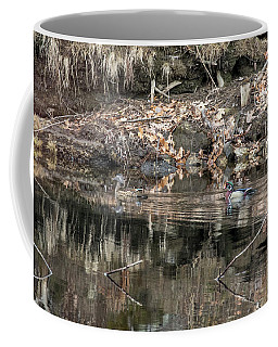 Beautiful Wood Ducks  Coffee Mug