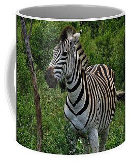 Beautiful Zebra Coffee Mug