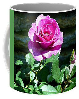 Coffee Mug featuring the photograph Beauty And The Bud by Will Borden
