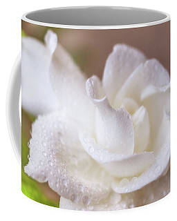 Beauty Defined Coffee Mug