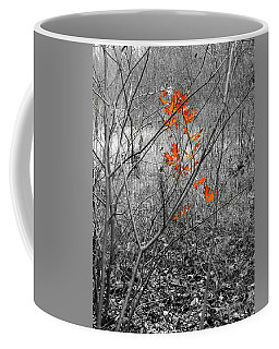 Beauty In Nature Sc Coffee Mug by Robert ONeil