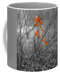 Beauty In Nature Scsg Coffee Mug by Robert ONeil