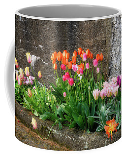 Coffee Mug featuring the photograph Beauty In Ruins by Michael Hubley