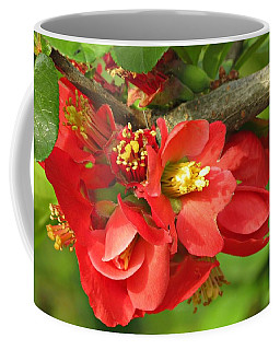 Beauty In The Branche Coffee Mug