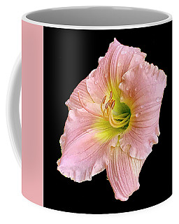 Beauty In The Garden #2 Coffee Mug