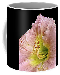 Beauty In The Garden #3 Coffee Mug