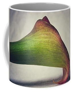 Beauty Coffee Mug by Karen Stahlros