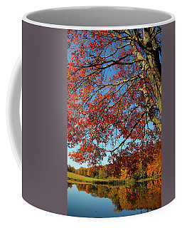 Coffee Mug featuring the photograph Beauty Of Fall by Karol Livote