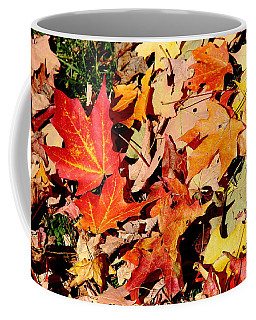 Beauty Of Fallen Leaves Coffee Mug
