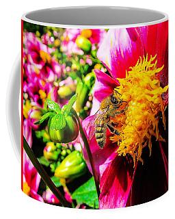 Beauty Of The Nature Coffee Mug by Cesar Vieira