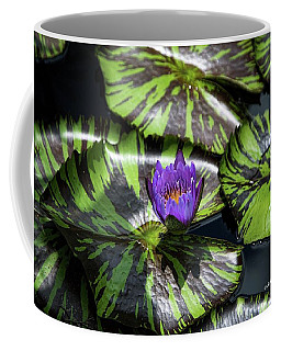 Beauty Rises To The Top Coffee Mug