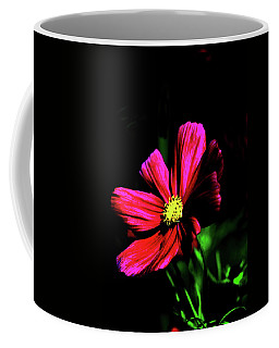 Coffee Mug featuring the photograph Beauty  by Tom Prendergast