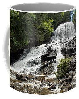Beaver Brook Falls Coffee Mug