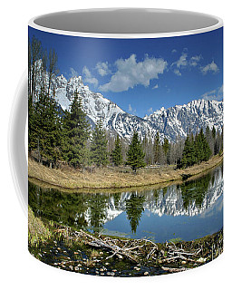 Coffee Mug featuring the photograph Beaver Dam by Ronnie and Frances Howard